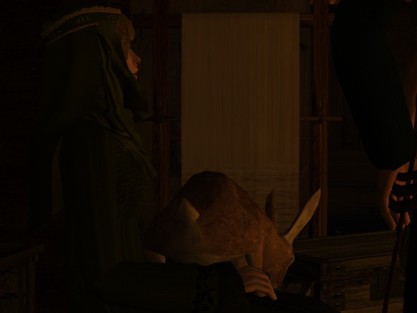 Magnus the Hare